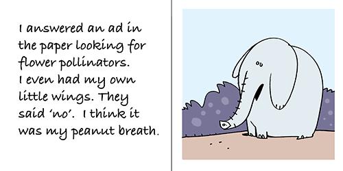 bee-elephant